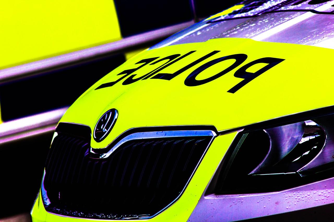Police car - zoom.jpg